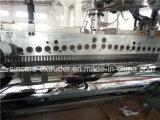 Chaîne de production sèche non cristalline d'extrusion de feuille d'animal familier de rendement élevé