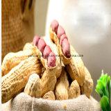 Núcleos de cacahuete rojo chino