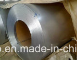Galvanisiertes Steel Coil/Gi für Roofing Sheet und Color Base Materials
