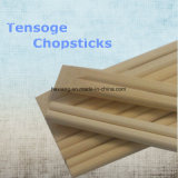 Hot Sale Factory Price Bamboo Chopsticks en vrac ou en papier