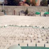 Естественная Polished мраморный каменная плитка пола для настила/стены