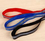 Harness y correo ajustables (lsh2004) del perro de animal doméstico