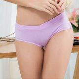 Slips inférieurs de taille de qualité pour les femmes enceintes