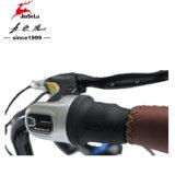E-Fiets van de Legering van het Aluminium van dame City Style 250W Brushless Motor 700c (jsl036c-7)