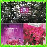 Leiden kweken het Lichte Licht van de Installatie het Volledige Spectrum voor de Hydrocultuur van Zaailingen Lichten van de Kruiden van Veg van Installaties (MAÏSKOLF met Schakelaar en dimmable) kweekt