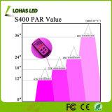 Hydroponic 실내 경작 가득 차있는 스펙트럼 LED는 가벼운 300W 450W 600W 800W 900W 1000W 1200W를 증가한다