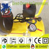 5HP dirigono il compressore d'aria asciutto guidato della vite del pistone
