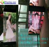 Schermo esterno all'ingrosso di colore completo LED di P5 SMD per la grande vendita mobile