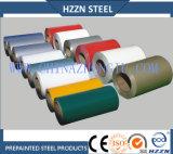 Bobina de acero galvanizada prepintada (fábrica)
