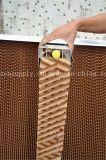 Le meilleur refroidisseur d'air évaporatif de Foshan complète la garniture 5090 de refroidissement