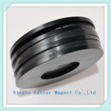 AuotomobileのスピーカーのためのN38hのリングの形のNdFeBの磁石