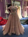 Um vestido da linha/noite da princesa Longo Luva para o casamento