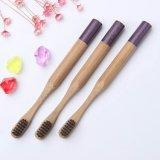 Toothbrush de bambu ambiental com a cerda de bambu da fibra