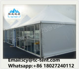 Constructeur imperméable à l'eau estampé personnalisé de tente d'écran de type de la pagoda 10 à vendre