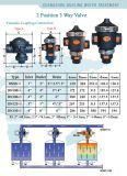 Клапан сброса DC24V Switchs Blowdown водоустойчивый