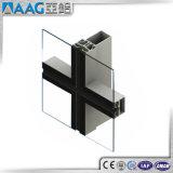De Gordijngevels van het Glas van het aluminium