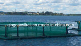HDPEフレーム、漁網が付いている栽培漁業のケージ