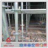 Andamio de Ringlock de la construcción del material de construcción concreta Q235
