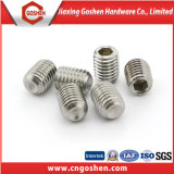 DIN916 Edelstahl Hexagon Socket Setscrews mit Cup Screw