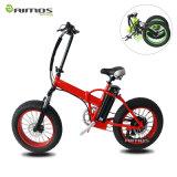 ¡Bicicleta eléctrica de 48V 3000W! ¡La bicicleta eléctrica más rápida del mundo! ¡Bicicleta de oro de la marca de fábrica E del motor!