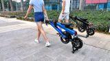 Bicicleta elétrica de dobramento com a bateria de lítio de Panasonic