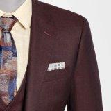 Vestito dei 2016 un nuovo uomini di affari di modo con il panciotto