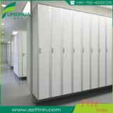 Fmh HPLの従業員の貯蔵用ロッカー