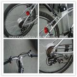 Schnelle Geschwindigkeits-Gebirgselektrisches Fahrrad mit gutem Preis