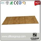 Pavimentazione del PVC di scatto di Customizabla di prezzi preferenziali
