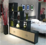 Gabinete de madeira da sapata da mobília Home executiva moderna da sala de visitas (UL-WR043)