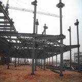 Centro especializado de la alameda de compras de la estructura de acero de la luz del diseño con de varios pisos