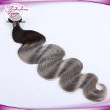 Do cabelo brasileiro do Virgin da qualidade superior cabelo de trama da cor 1b/Grey de Ombre da onda do corpo