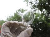 Kleiner Entwurfs-Glaspfeife/Wasser-Rohr