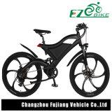 جعل [48ف] [750و] الصين [س] موافقة درّاجة كهربائيّة