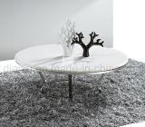 거실 스테인리스 대리석 커피용 탁자 (CT006#)