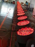 단계 가벼운 LED RGBW 뒝벌 눈 점화