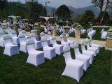 Dekking van de Stoel van het Huwelijk van Nice de Witte Goedkope