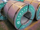 PPGI/HDG/Gi/Secc Dx51 아연 냉각 압연되는 최신 담궈진 직류 전기를 통한 강철 코일 또는 장 또는 격판덮개 또는 지구