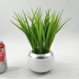 Oniongrass cerâmico circular artificial Potted