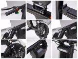 中国のスクーター500W 8.7+11.6ahの二重電気自転車電池
