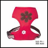 Cablaggio molle sveglio registrabile della maglia della maglia del cane di animale domestico del progettista della ragazza
