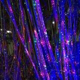 Luces de la Navidad de interior y al aire libre del laser de lujo