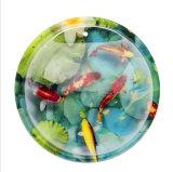 Cuvette acrylique fixée au mur de poissons de bulle de poissons de Creatve