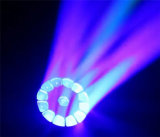 19X15W 꿀벌 눈 세척 광속 LED 이동하는 맨 위 빛