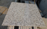 Het witte Witte Graniet van Bala van het Graniet