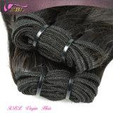 Nouveaux styles Arrivée de cheveux gros cheveux naturels non transformés brésilienne