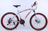 Llevar la nueva ola de la bici de la manera, de la alta calidad, cómoda y robusta de montaña