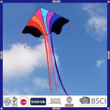 2016真新しいデザイン昇進の飛行凧