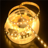 Les lumens élevés ont sorti la lumière de bande flexible de DEL (LM5630-WN120-W-24V)