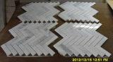 Escudo do projeto e telha luxuosos do mosaico do teste padrão do mosaico do mármore